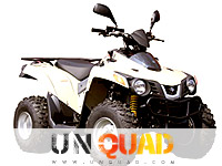 Quad SYM QuadLander 300 Entry