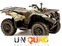 Quad Yamaha Grizzly 450 EPS