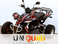 Quad Shineray Tercel 250