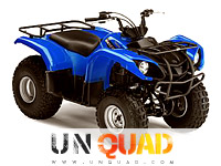 Quad Yamaha Grizzly 125