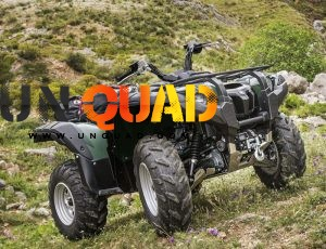 Quad Grizzly 700 EPS 4x4 Wthc
