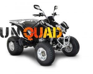 Quad Kymko Maxxer 250