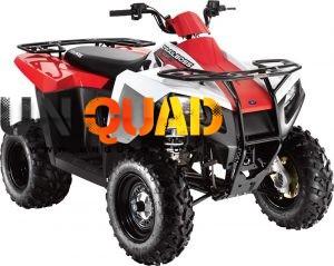 Quad Polaris Trail Boss 330