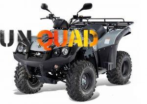 Quad TGB Blade 325 SL