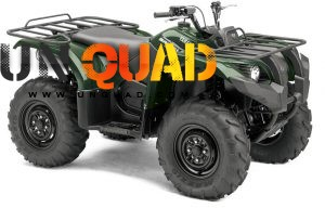 Quad Yamaha Grizzly 450