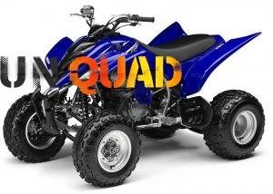 Quad Yamaha YFM 350