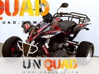 287 Quad Shineray