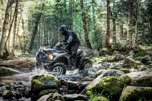 Kawasaki Brute Force 750 4x4i EPS Riviere Et Pierres