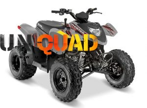 Quad Polaris Phoenix 200