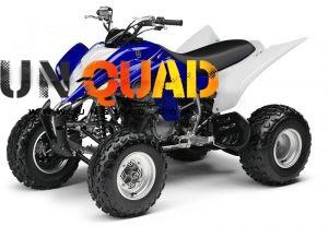 Quad Raptor YMF 350 R W