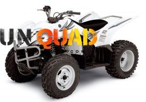Quad Yamaha 450 Wolverine 4x4