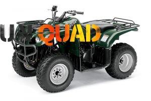Quad Yamaha Big Bear 250