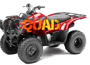 Quad Yamaha Grizzly 300