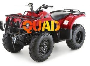 Quad Yamaha Grizzly 350