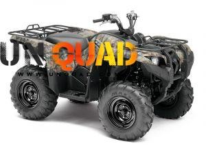 Quad Yamaha Grizzly 550