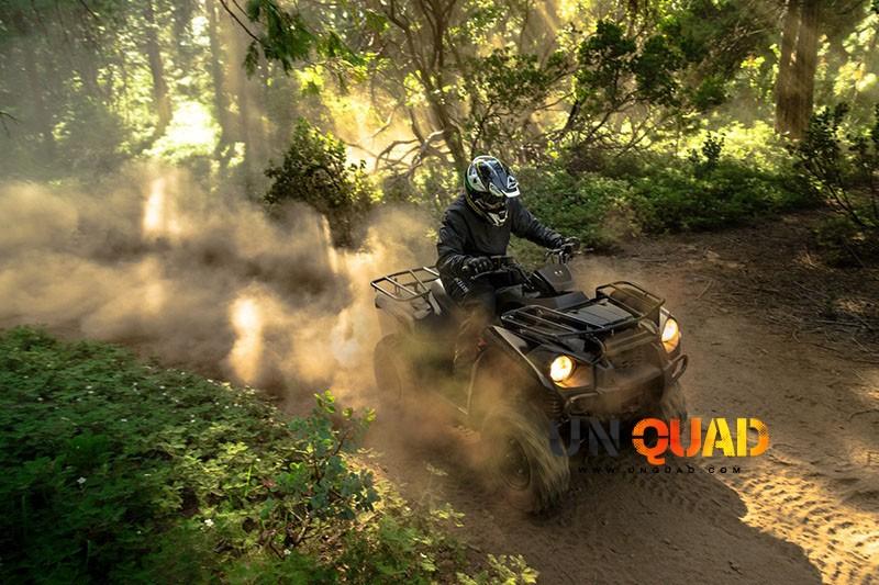 Le Quad Kawasaki Brute Force 300 Passe Partout