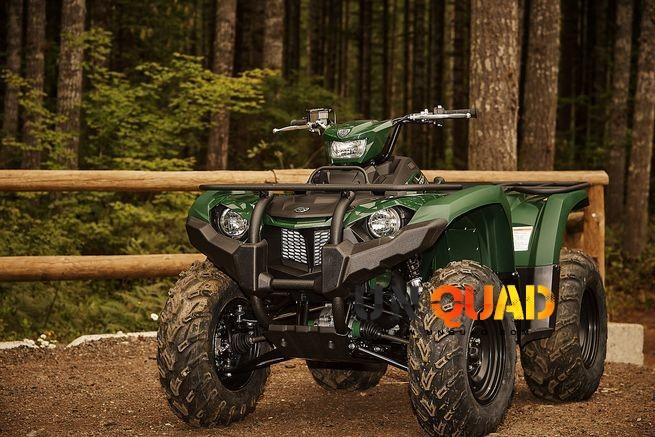 Quad Kodiak 450 Vert